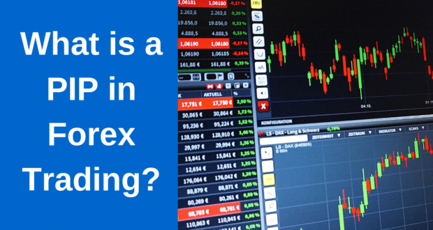 What is a pip in the forex market